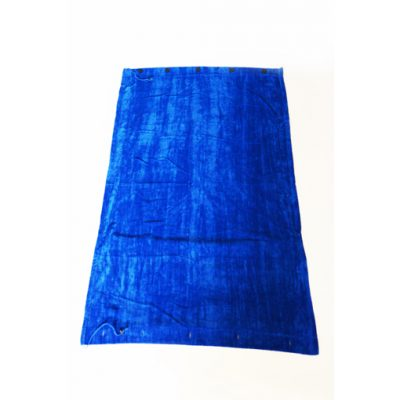 Chameleon Beach Towel Blue